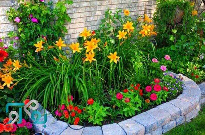 باغچه هاا را از گل و گیاه پر کنید